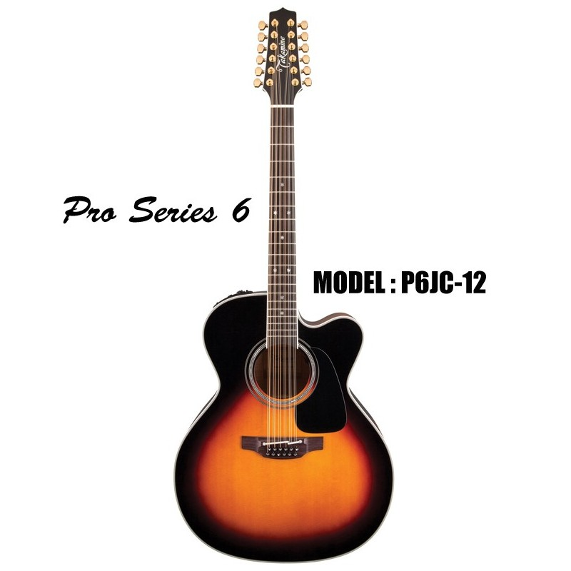 takamine serie pro 6 guitarra electro acustica de 12 cuerdas olvera music. Black Bedroom Furniture Sets. Home Design Ideas