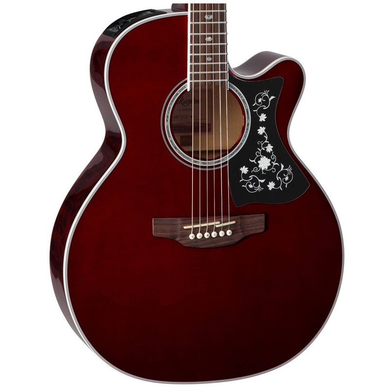 TAKAMINE NEX Body Acoustic Electric Guitar
