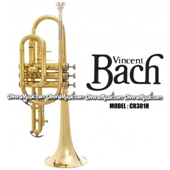 BACH Student Model Cornet - Lacquer Finish