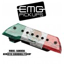 EMG Acoustic Active Soundhole Pick-Up System - Bandera