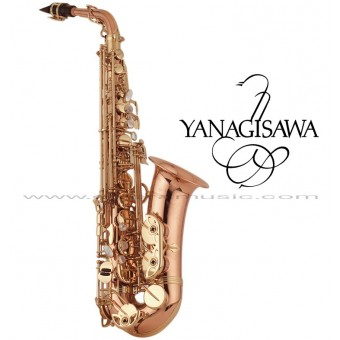 "YANAGISAWA ""WO Series"" Professional Eb Alto Saxophone - All Bronze"